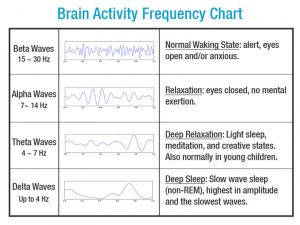 Brain Signals Ascension Glossary